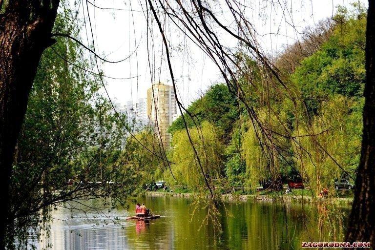 У Голосіївському парку Києва будуть шукати незаконні будівництва картинка