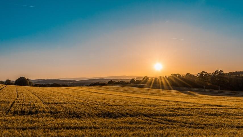 В Госгеокадастре назвали сроки завершения инвентаризации земель