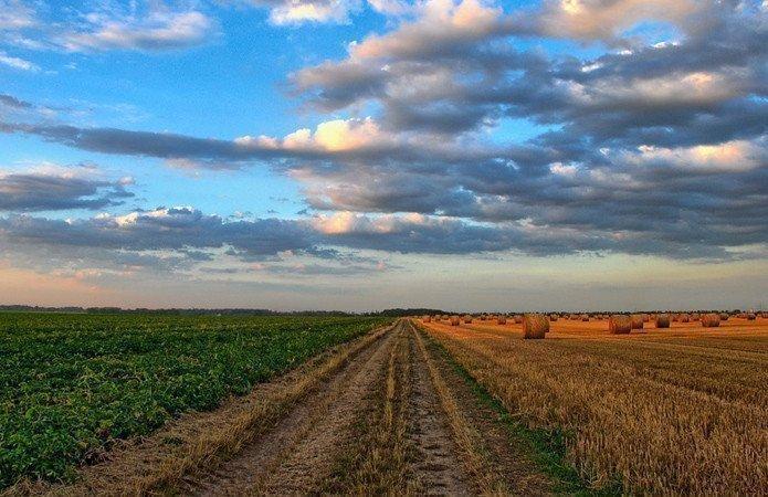 Картинка: В кадастр внесли более 31 млн га сельхозземель