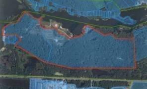 Картинка: Київська область хоче повернути 32 га землі на березі річки