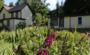 Как продлить срок наследования дома и земли картинка