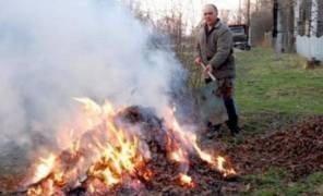 сжигать листья запрещено