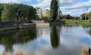 В Киеве расчистят озера в микрорайоне Теремки-2 картинка