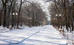 Картинка: В Киеве 5 зеленых зон спасли от застройки