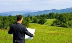 Картинка: Подписан закон о борьбе с земельным рейдерством