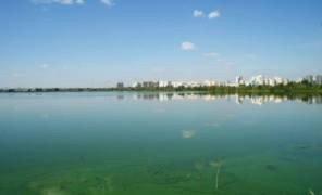 Картинка: до генплану Києва внесли більше зелених зон
