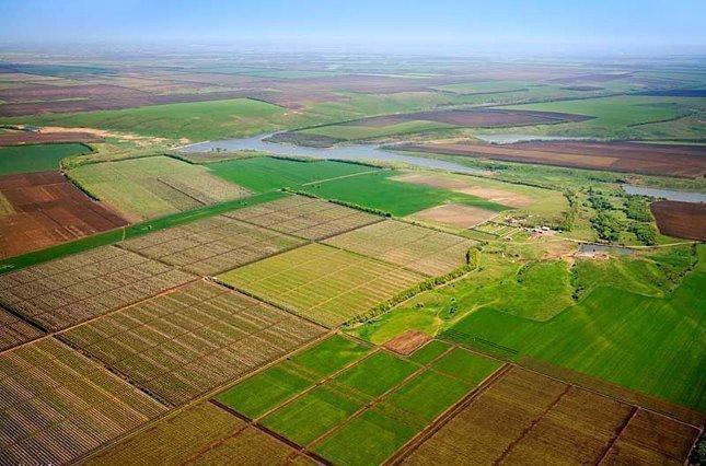 Картинка: Всемирный банк проверит земельный кадастр Украины