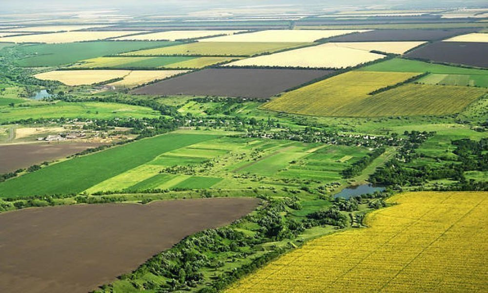 Картинка: відомості щодо земельних ділянок
