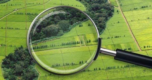 Прокуратура хоче повернути 9 гектарів землі у Києво-Святошинському районі