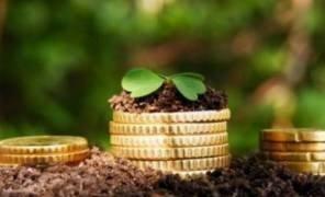 Киеву вернули землю стоимостью 110 миллионов гривен