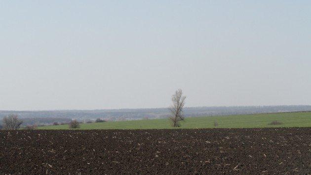 Безкоштовне отримання землі в Україні - не зовсім безкоштовне. Картинка