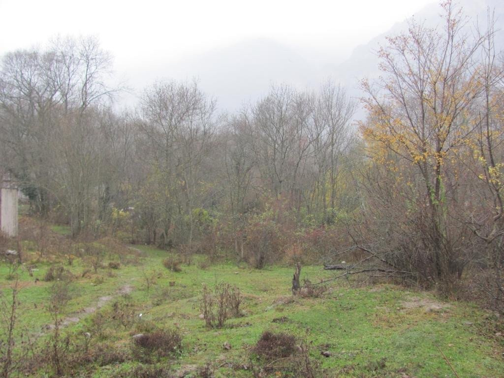 Photo: Sale land in Yalta. Announcement № 4305