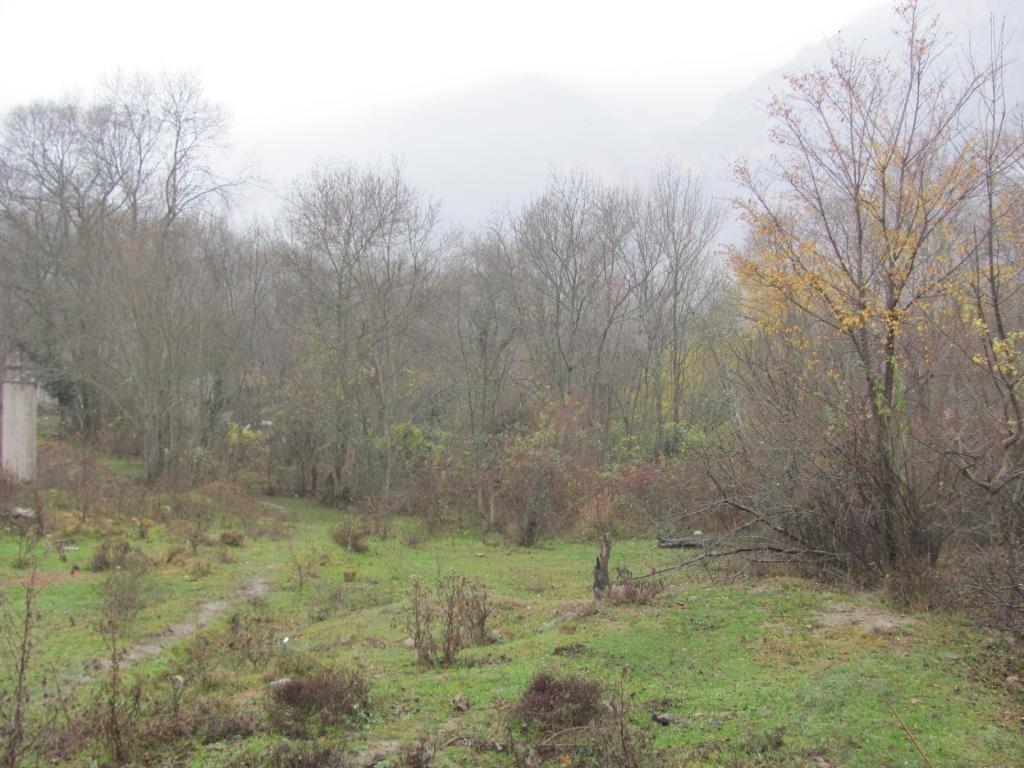 Фото: Продам земельный участок в городе Ялта. Объявление № 4305
