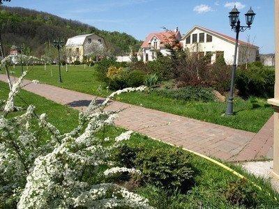 Фото: Орендую будинок в місті Підгірці. Оголошення № 4323
