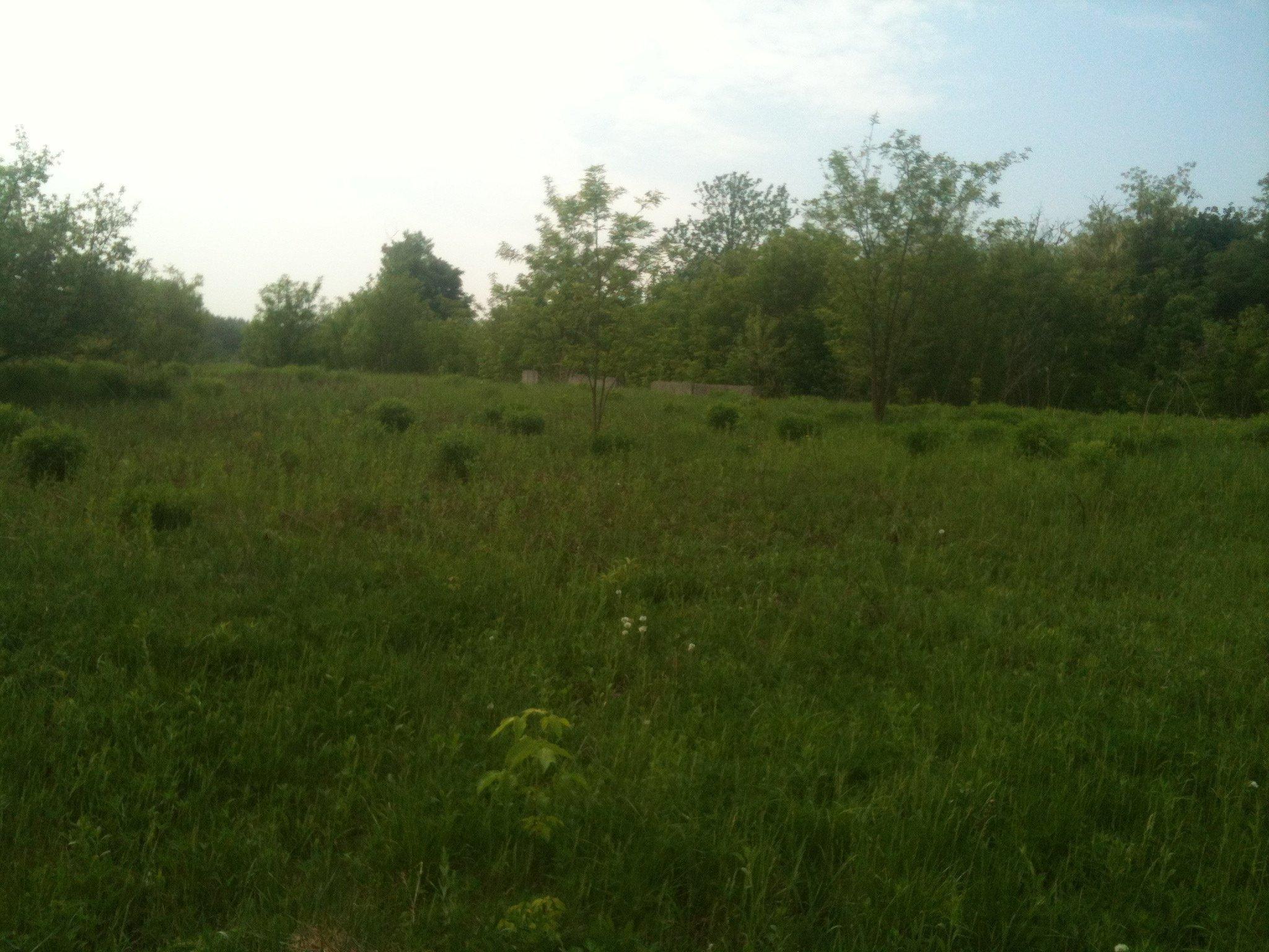 Фото: Продам земельну ділянку в місті Лісники. Оголошення № 4453
