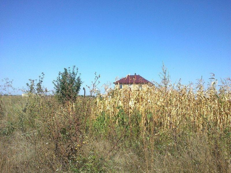 Арендую земельный участок в городе Фонтанка. Объявление № 3312