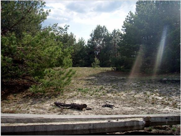 Photo: Sale land in Yasnogorodka. Announcement № 4744