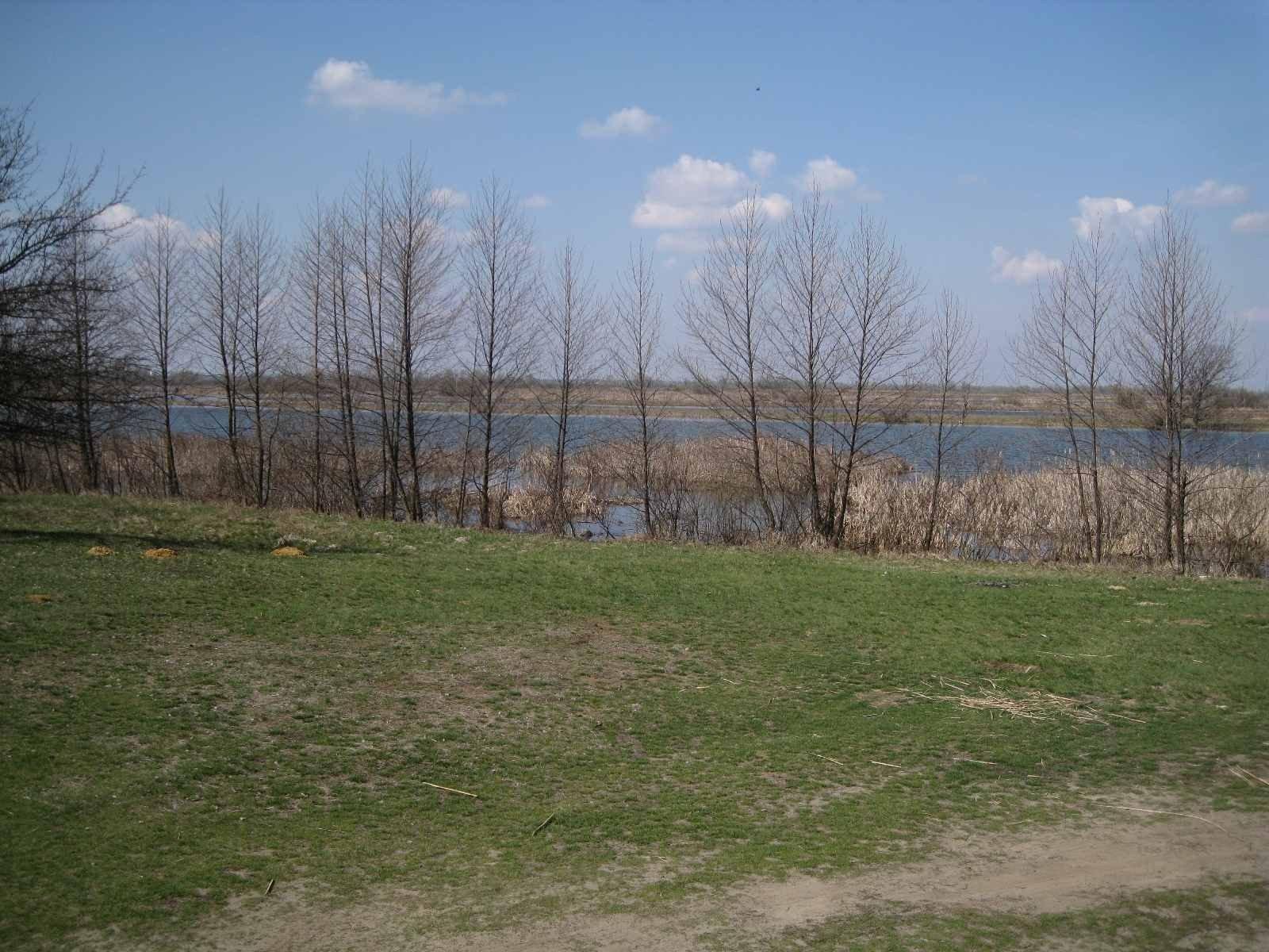 Photo: Sale land in Kiilov. Announcement № 3387