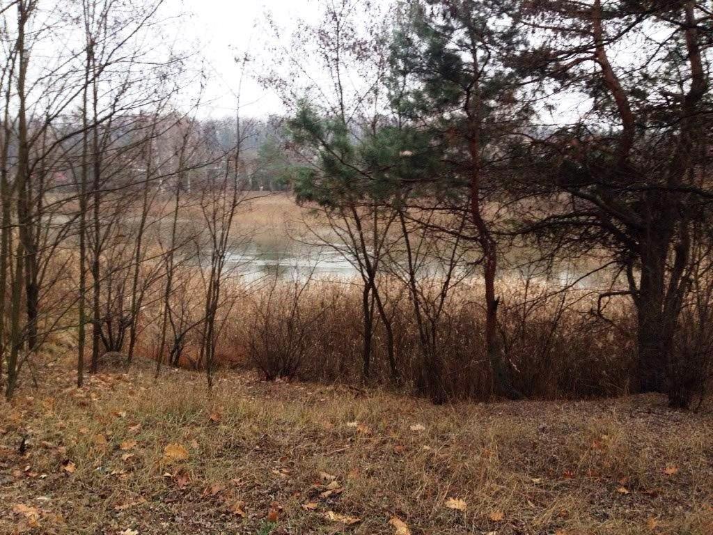 Фото: Продам земельну ділянку в місті Дмитрівка. Оголошення № 5312