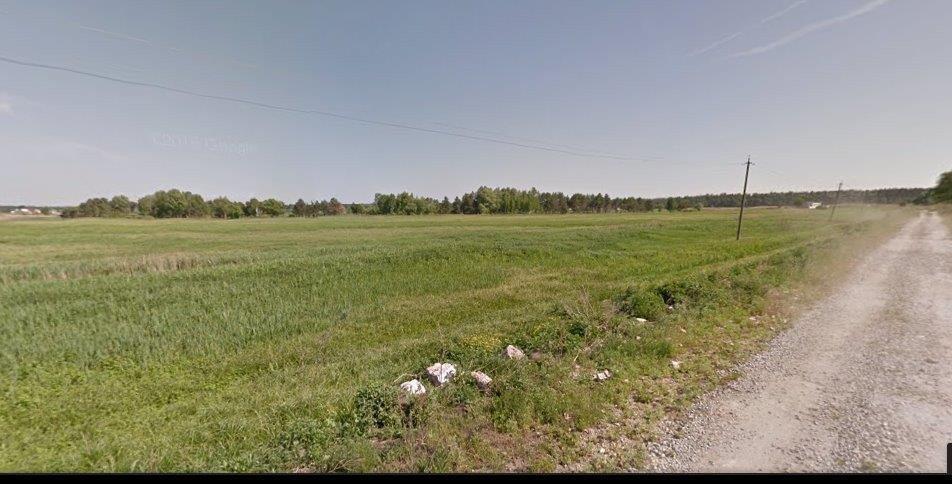 Фото: Продам земельный участок в городе Новые Безрадичи. Объявление № 5343