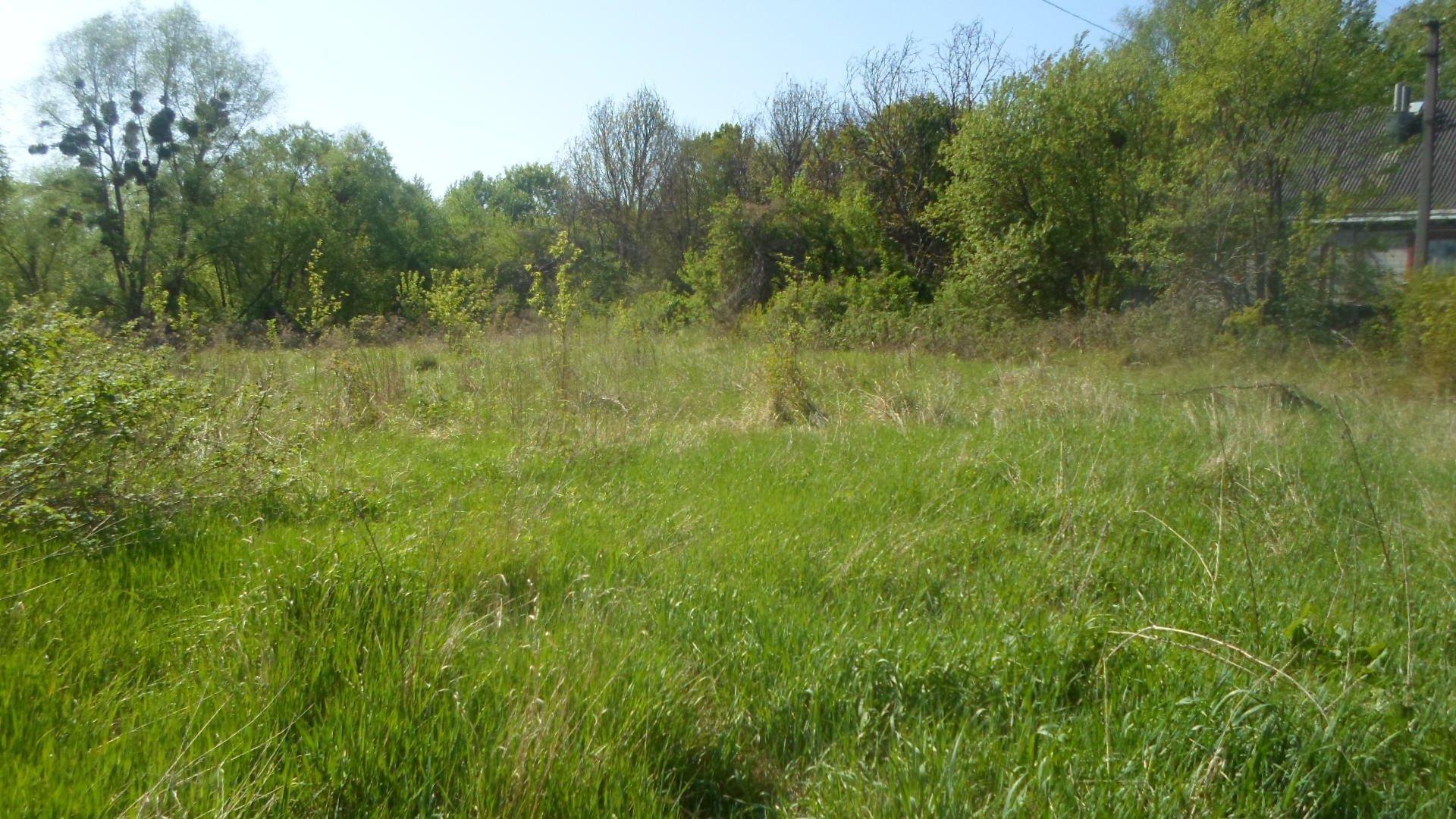 Фото: Продам земельну ділянку в місті Лісники. Оголошення № 5806