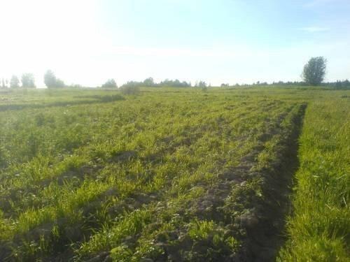 Продам земельный участок в городе Русская Поляна. Объявление № 3655
