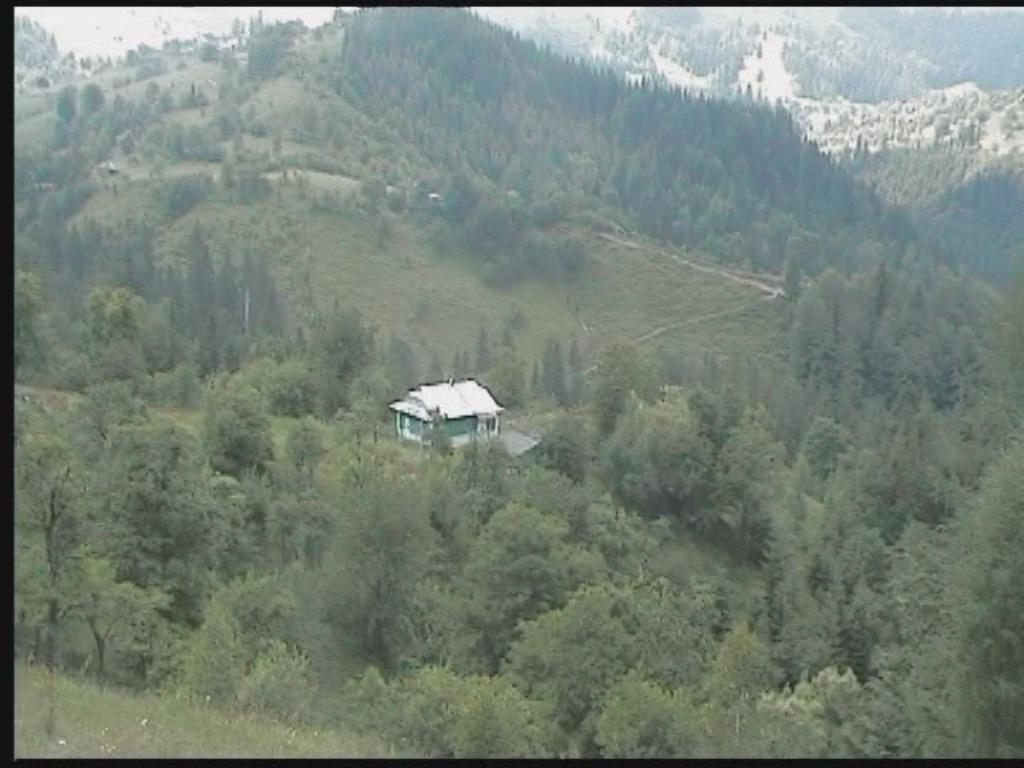 Продам земельный участок в городе Косов. Объявление № 3183
