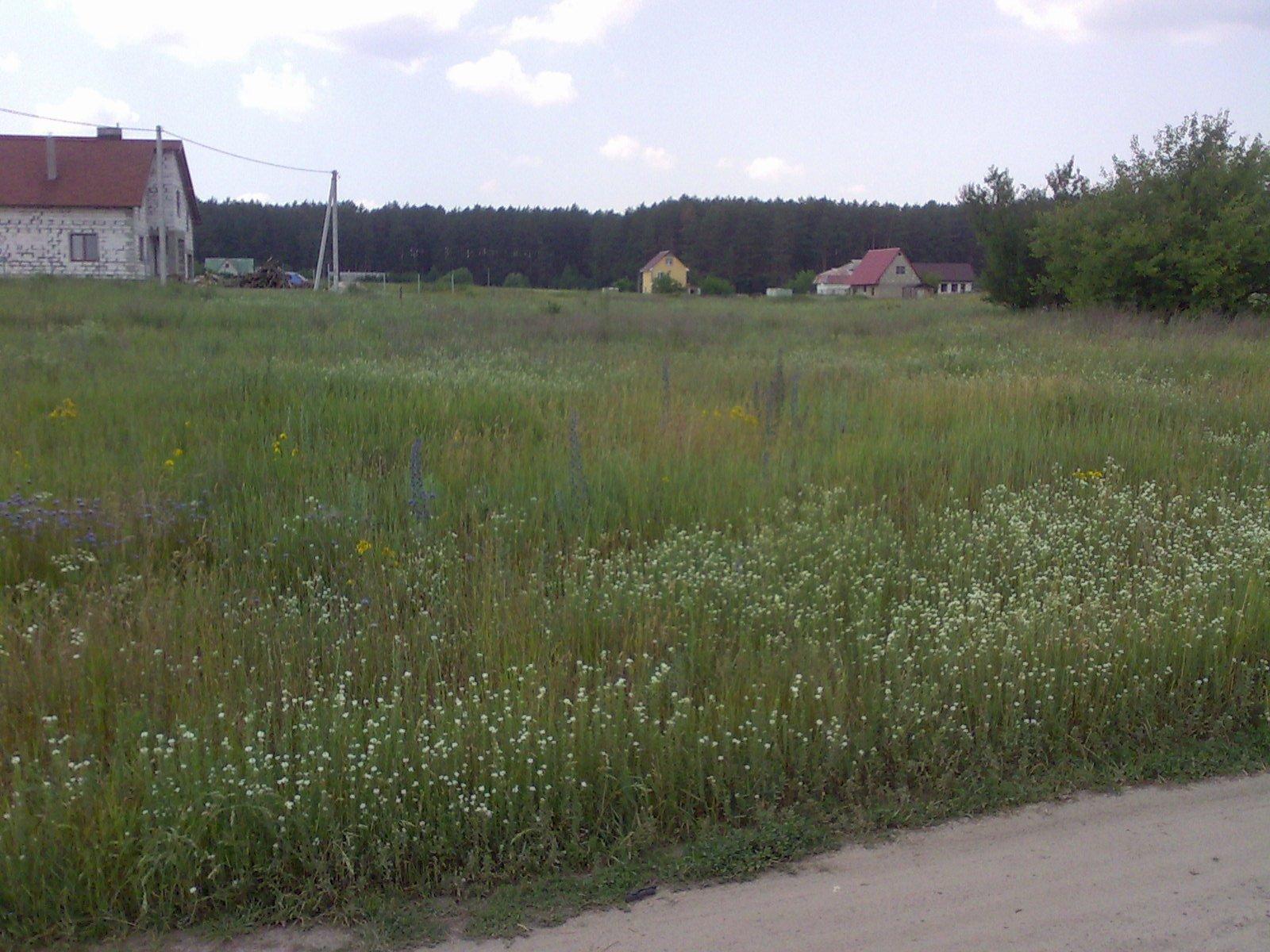 Фото: Продам земельну ділянку в місті Блиставиця. Оголошення № 4105